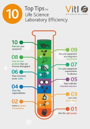 Vitl Lab Efficiency Infographic Preview